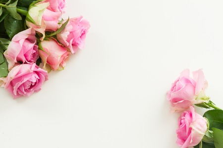 Styled desktop scene with pink fresh rose flowers, copy space on white table