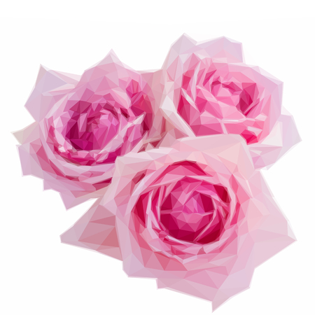 blooming: Low poly illustration three pink blooming roses Illustration