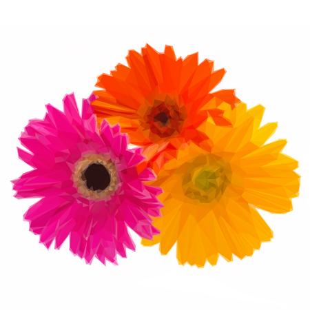 herbera: Low poly illustration bouquet of gerbera flowers