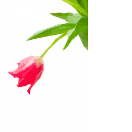 red tulip: Low poly illustration of one red tulip Illustration