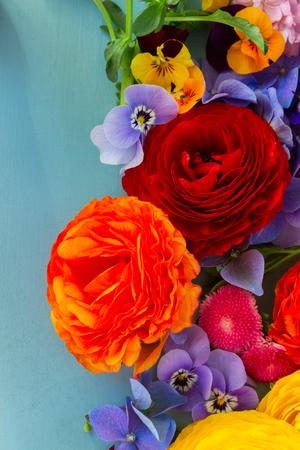 blue ranunculus fresh cut flowers background on blue ranunculus pansies and