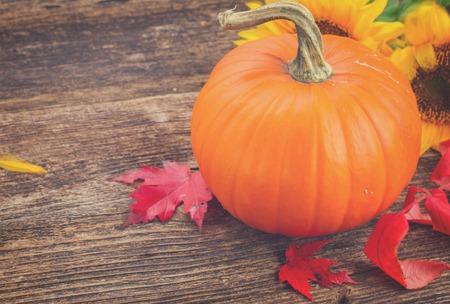 ヒマワリと秋オレンジ カボチャ葉木のテクスチャ テーブル レトロ 1 トーン 写真素材