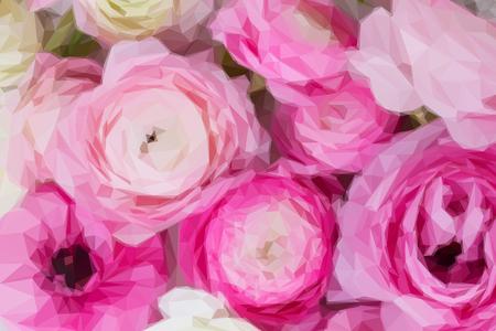 低ポリ イラスト ピンクと白のラナンキュラスの花クローズ アップ背景