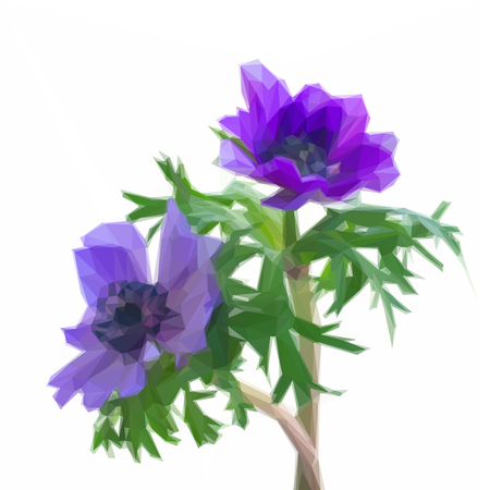 Low poly illustration of blue anemone flowers