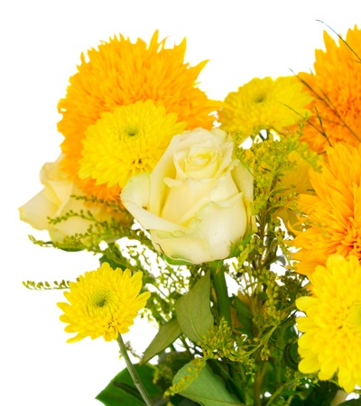 Fall mums fall flower stock photos royalty free fall mums fall yellow fall flowers bouquet close up isolated on white background mightylinksfo