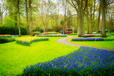 flowerbeds: Colourful Flowerbeds and Winding Pathway in an Dutch Formal Garden, retro toned