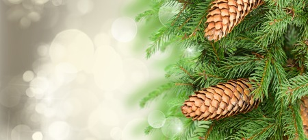 chrismas tree and pine cones on gray festive background with sparkles