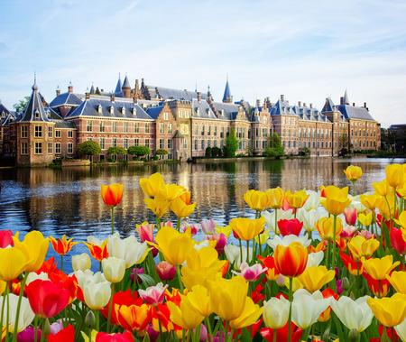 Binnenhof 네덜란드 의회, 헤이그 덴 하겐 봄, 네덜란드 스톡 콘텐츠