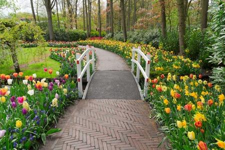 Stone walk way winding in spring formal flower garden Keukenhof, Holland Stock Photo