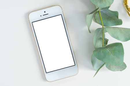 Phone with green plant mock up flat lay styled scene, top view, copy space on empty screen background Archivio Fotografico