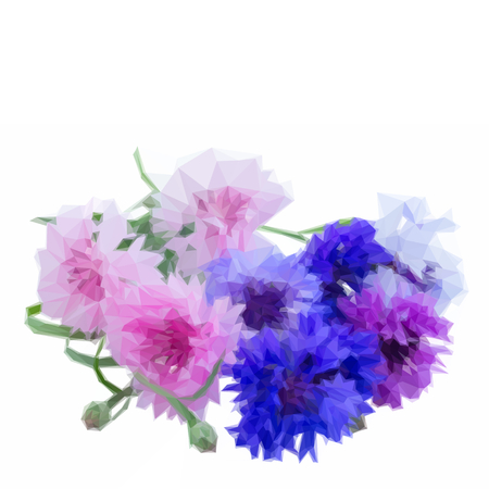 Low poly illustration Bunch of blue and pink cornflowers isolated on white background
