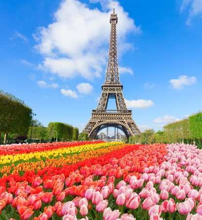 Eiffel Tower in sunny day with blooming spring flowers, Paris, France Stock Photo