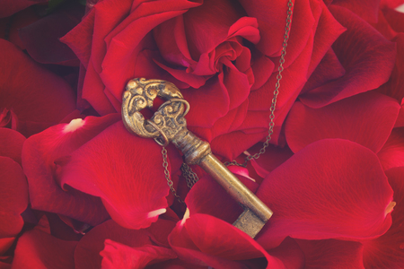 Key with the red blooming rose and fresh petals as a symbol of love, retro toned Stock Photo