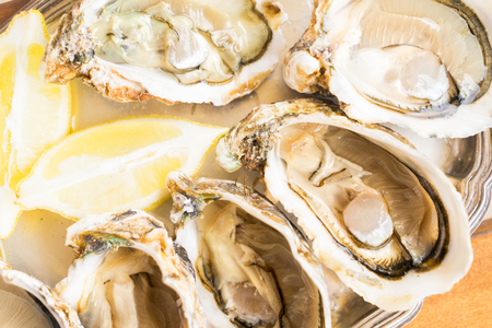 Raw fresh open oysters shells with lemon close up