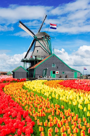 traditional Dutch windmill of Zaanse Schans with dutch flag, Netherlands Stock Photo