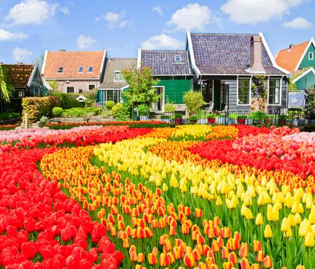 zaan: rural dutch scenery of small old town Zaandijk, Holland Netherlands Stock Photo