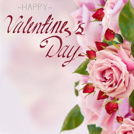 hapy: pink garden roses with buds with happy valentines day greetings