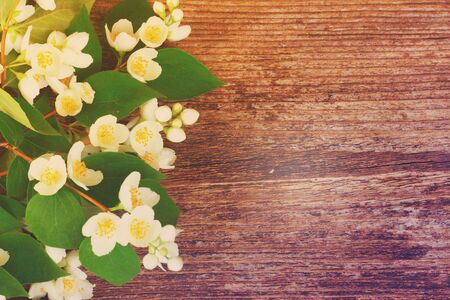 redolence: Jasmine fresh flowers and leaves border on wooden table, retro toned