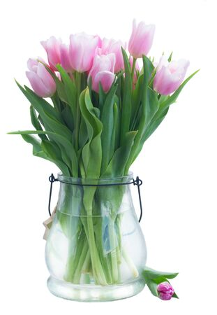 Bouquet of fresh pink tulips in vase isolated on white background