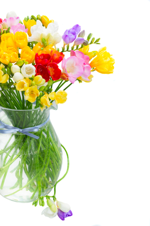 bouquet of bright spring freesia flowers in glass vase isolated on white background Stock Photo
