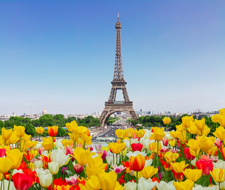 Eiffel Tower and Paris skyline in spring sunny day with tulips, France