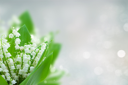 lilly of the valley flowers on blue bokeh background with copy space Foto de archivo