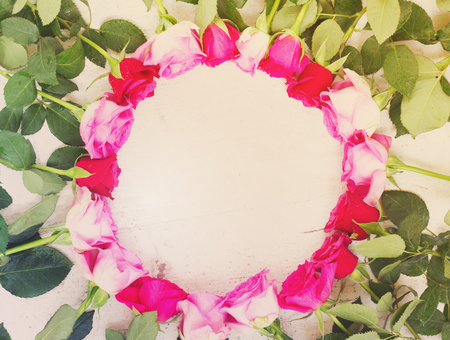 Pink and mageta fresh roses border on white wooden aged background, retro toned