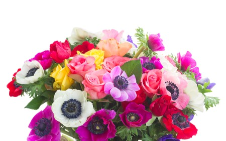 Fresh colorful Anemones and roses flowers bouqet isolated on white background Stock Photo