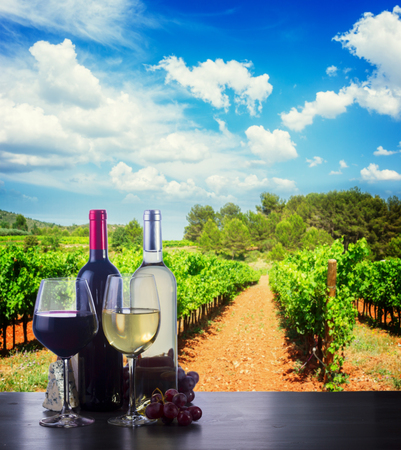 Bottle and glass with white and red wine in vineyard