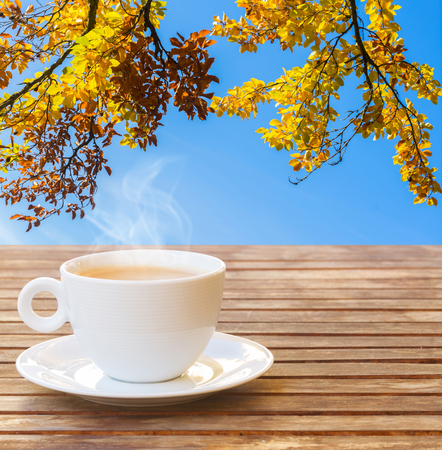 one white coffee cup in autumn garden on wooden table Stock Photo
