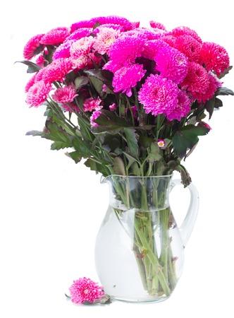 Magenta Pink Chrysanthemum Flowers In Vase Isolated On White Stock