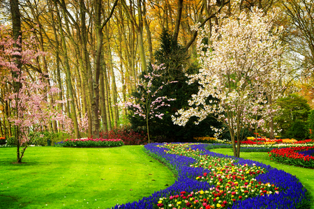 Colourful blooming cherry trees and spring flowers flowerbeds colourful blooming cherry trees and spring flowers flowerbeds in an spring formal garden retro toned mightylinksfo
