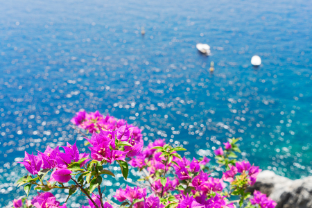 Bright flowers and sea, Beautiful details of Amalfitana at summer, Amalfi coast Italy Banque d'images - 90529629