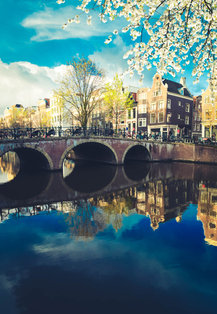 Dutch scenery with canal and mirror reflections at blooming spring, Amsterdam, Holland Netherlands, toned