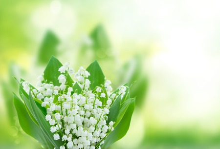 lilly of the valley flowers close up on green bokeh background with copy space Archivio Fotografico