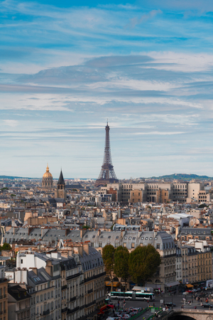 skyline of Paris city with eiffel tower landmark from above in soft morning light, France