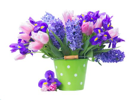 Pink tulips irises and blue hyacinths fresh flowers in green pink tulips irises and blue hyacinths fresh flowers in green pot isolated on white background mightylinksfo