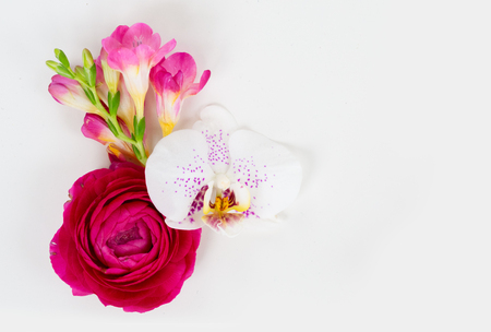 Flowers composition made of orchid and ranunculus ranunculus flowers on white background. Flat lay, top view, copy space