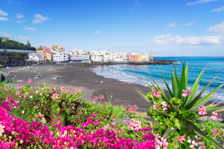 beach with black sand and tropical flowers, Playa Jardin, Puerto de la Cruz de Tenerife, Spain Stock Photo