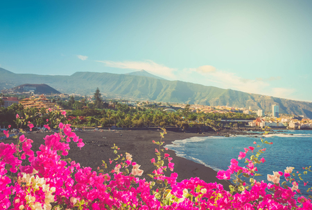 black sand and bright flowers of playa Jardin,Puerto de la Cruz, Tenerife, Spain, toned Stock Photo - 104027886