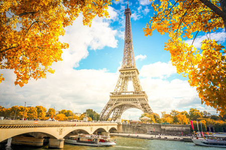 Eiffel Tower and Pont dIena with yellow fall tree, Paris France