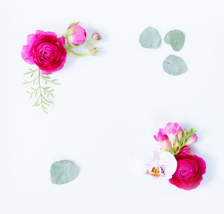 Floral composition. Frame of eucaliptus leaves and flowers on white background. Flat lay, top view, copy space Zdjęcie Seryjne