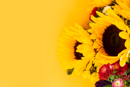 Aster and sunflower flowers on yellow, flat lay floral background with copy space Stock Photo