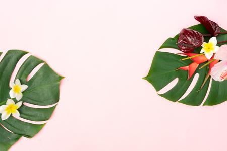 Tropische grüne frische Monstera-Blätter und exotische Blumen auf Rosa mit Kopierraum, flache Lage Standard-Bild