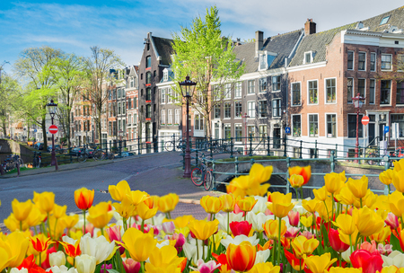 Street in old town with historical houses, Amstardam at spring, Netherlands