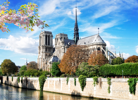 Notre Dame cathedral over the Seine river at spring, Paris, France