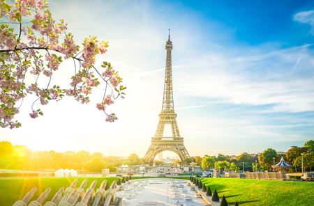Eiffel Tower landmark from Trocadero at sunrise at spring, Paris, France