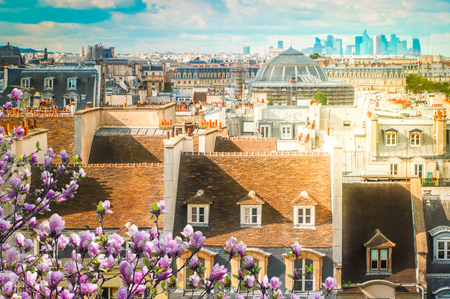 View of vintage roofs of Paris with spring flowers, France
