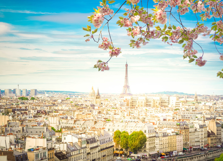 Skyline of Paris city with eiffel tower from above in soft morning light with flowers, France