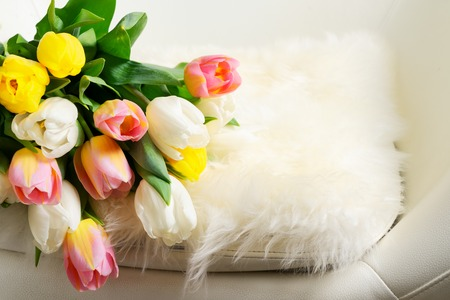 Spring pink, yellow and white tulips in chair close up 版權商用圖片